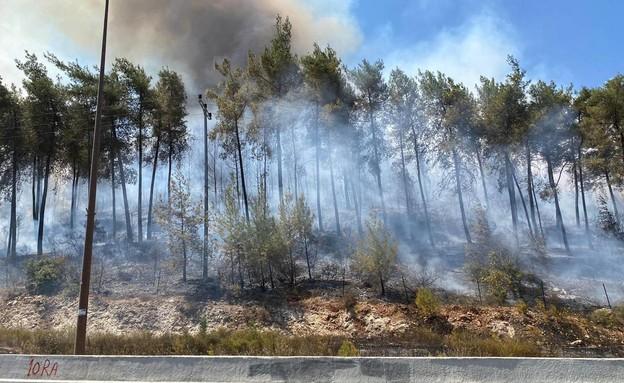 שרפה גדולה בהרי ירושלים – 6 מטוסי כיבוי הוזנקו