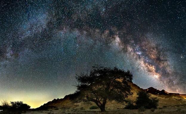 ליל כוכבים (צילום: אלון צנגוט, רשות הטבע והגנים)
