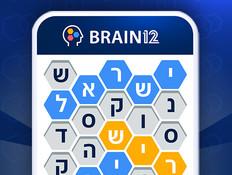 brain12_03