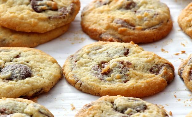 עוגיות שוקולד צ'יפס מדויקות  (צילום: דרור כהן, בייקרי 365)
