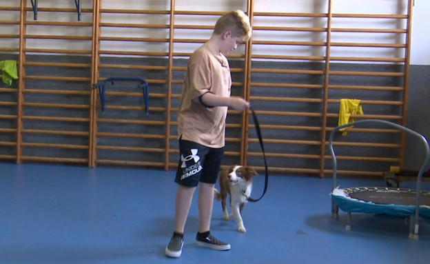 כלבים טיפוליים לילדים עם אוטיזם (צילום: N12)