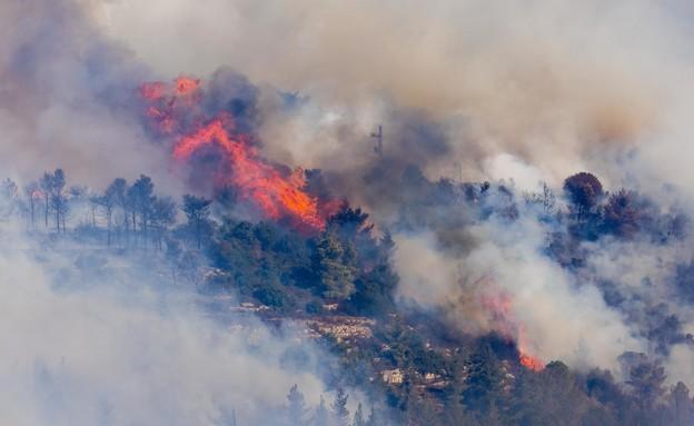 שריפה בהרי ירושלים (צילום: פלאש 90)