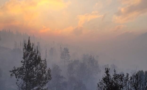 """השרפה בהרי ירושלים הבוקר (צילום: אריאל קדם, רט""""ג)"""