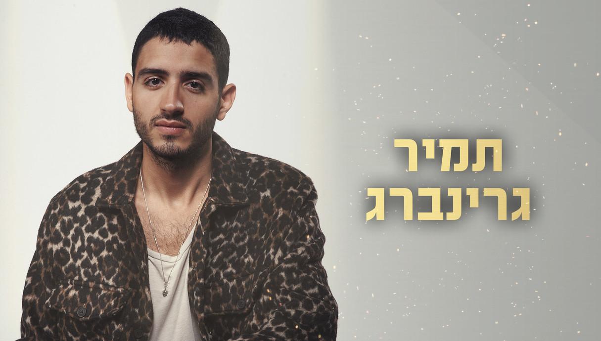 תמיר גרינברג