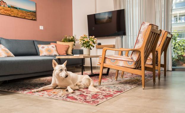 דירה בחריש, עיצוב מירב רוטשס קורן וליאת בנימיני - 17 (צילום: נימרוד כהן)