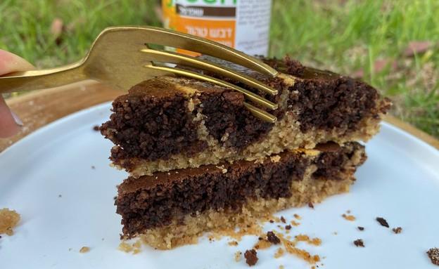 עוגת דבש שוקולד של שיינא גרשוביץ (צילום: שיינא גרשוביץ)