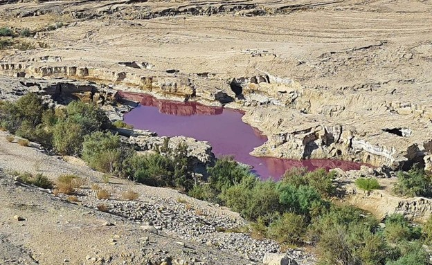מאגר מים בים המלח הירדני נצבע אדום (צילום: סעיף 27א לחוק זכויות יוצרים)
