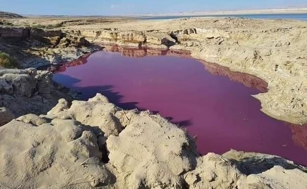 מאגר מים ליד ים המלח הירדני נצבע אדום (צילום: סעיף 27א לחוק זכויות יוצרים)
