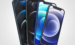 אייפון 12 (צילום: ALDECA studio, shutterstock)