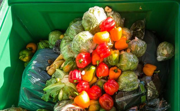 ירקות בפח - בזבוז מזון (צילום: joerngebhardt68, shutterstock)