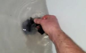 ניקוי אמבטיה  (צילום: טיקטוק shawnweiss8)