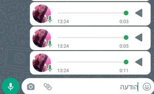 הודעות קוליות בוואטסאפ (צילום: צילום מסך)