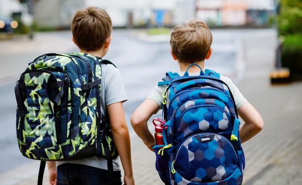 תאומים, אחים (צילום: Irina Wilhauk, shutterstock)