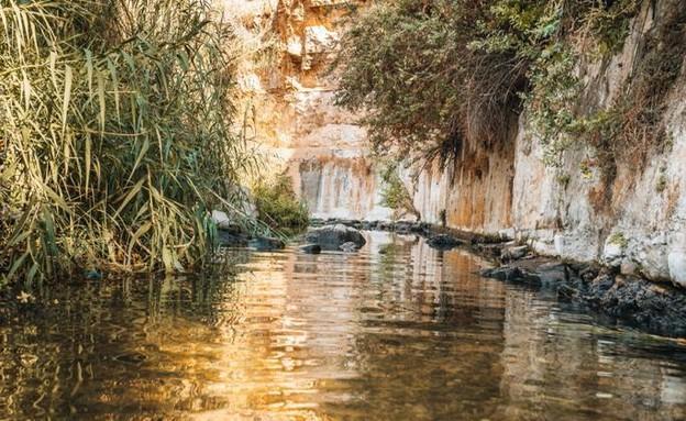 נחל פרת (צילום: אור בן יהודה)