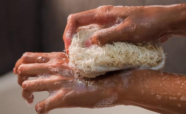 ידיים (צילום: greta hoffman, pexels)